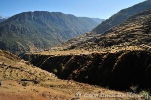 BTL-Landwirtschaft-im-Himalaya-041